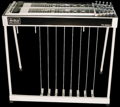 a Magnum Pro Select D-10 Double 10-string pedal steel guitar